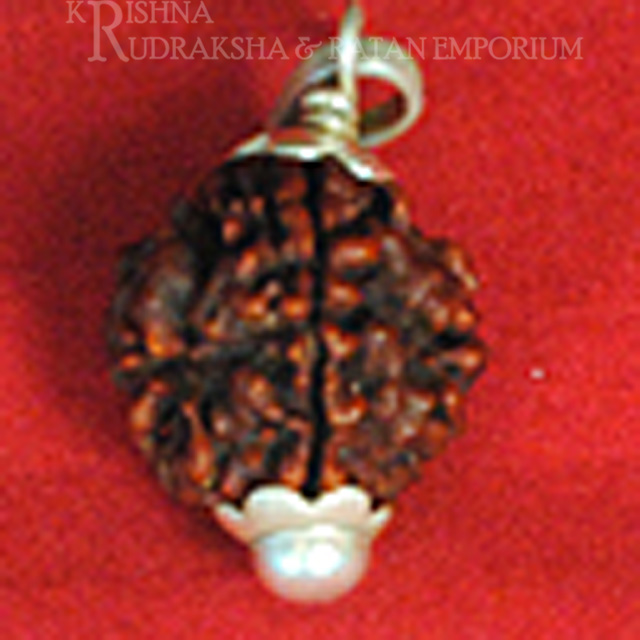 Nepali Rudraksha With Pure Silver Pedent( Lab Certified )