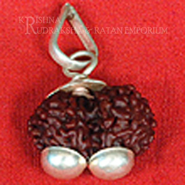 Indonesion(Java) Rudraksha With Pure Silver Pedant ( Lab Certified )